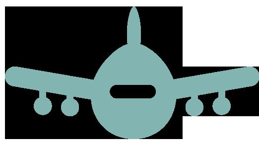 avion-icon